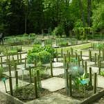 Jardin de l'Abbaye de Vauclair